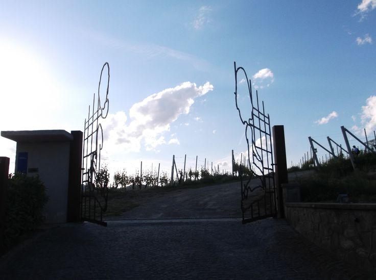 Ceretto's gate, made by Valerio Berruti.