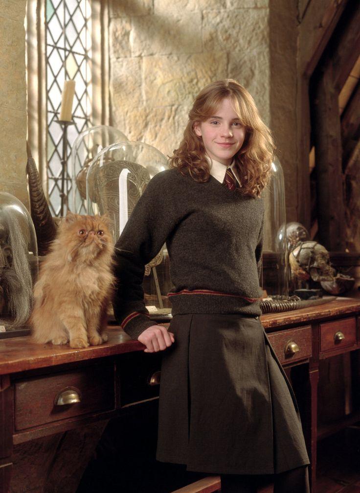 Cat Hermione Granger Crookshanks in 2020 Harry potter