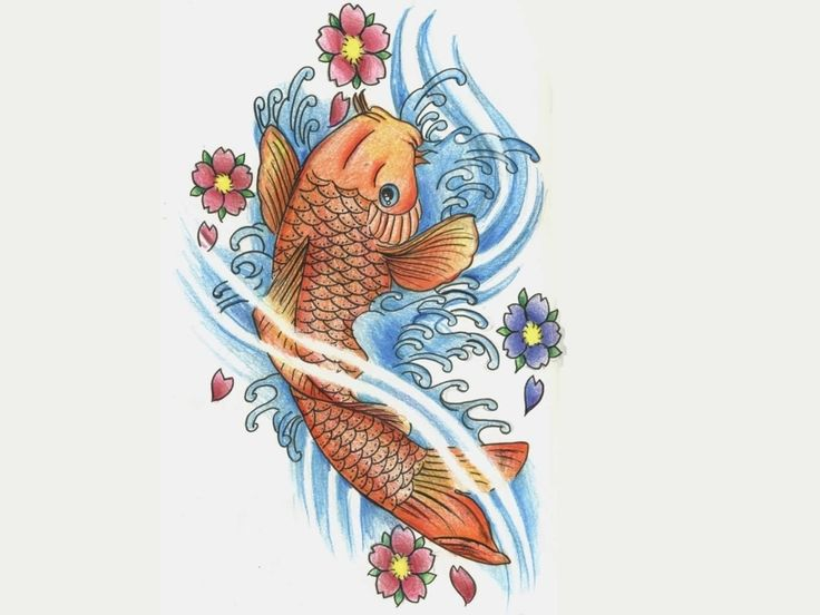 17 best ideas about koi fish tattoo on pinterest dragon for Japanese koi design
