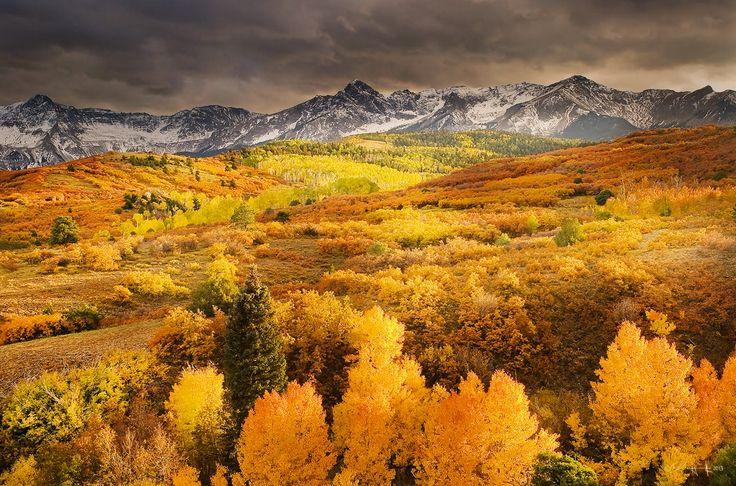 ***Colors of a Colorado autumn by Del Higgens