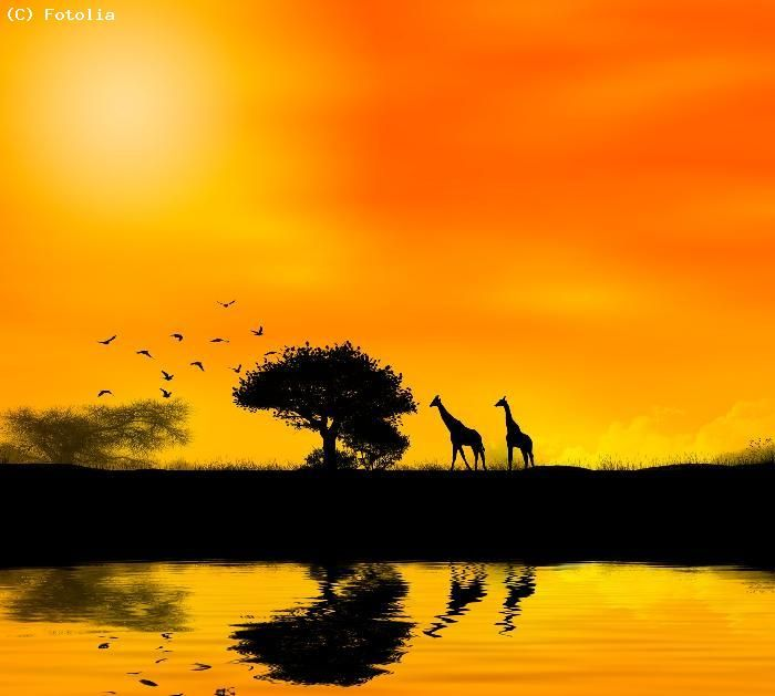 Coucher de soleil - RD Congo