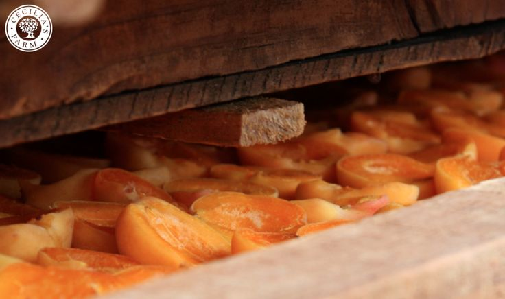 Dried Fruit ready to packed and shipped right to your door. Shop online at www.ceciliasfarm.co.za