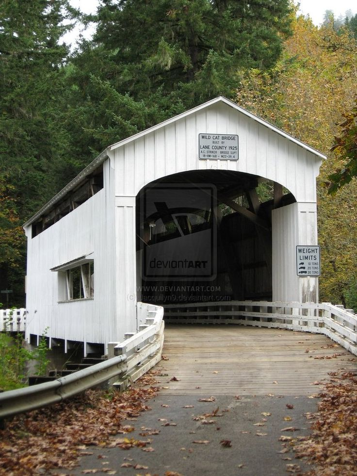 "Jacquilyn N. Yeend Photography ""Covered Bridge"" Florence, Oregon: October 2011"