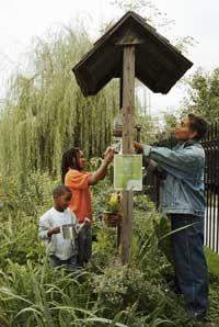 9 best Community Garden images on Pinterest Garden compost