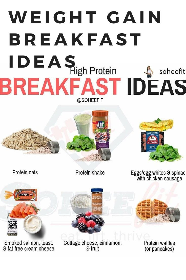 High Protein Breakfast Ideas For Weight Gainer Protein Breakfast Weightgain Re High Protein Recipes High Protein Breakfast Recipes Easy High Protein Meals