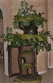 Enchanted Cat Tree :  ): Enchanted Cat, Cat Furniture, Cat Accessories, Furbabies, Cat Houses, Cat Trees