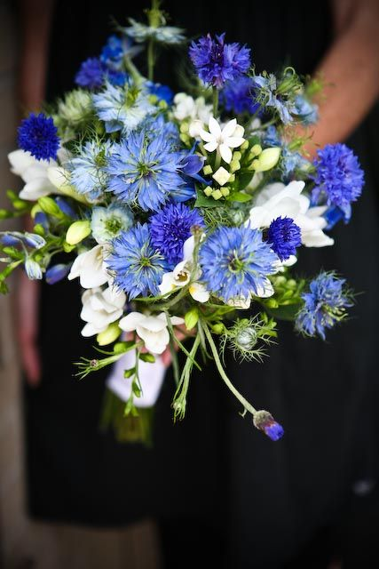 Blue and white wildflower wedding bouquet. Perfect for bride or bridesmaid. Designed using blue cornflower and delphinium, fragrant white freesia, and bouvardia. Backyard Garden Florist.