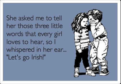 Notre Dame Football, Lets Go Irish ❤ I love being an Irish girl!