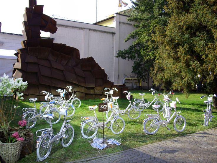 Bicycle - Cigno Seventy www.bernardisrl.net
