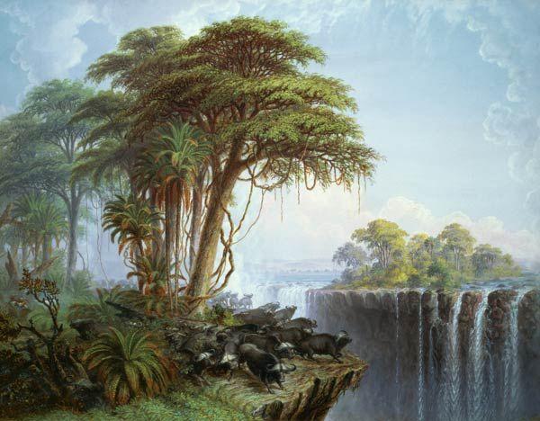 Bild: Thomas Baines - Buffalos Driven to the Edge of the Chasm opposite Garden Island, Victoria Falls