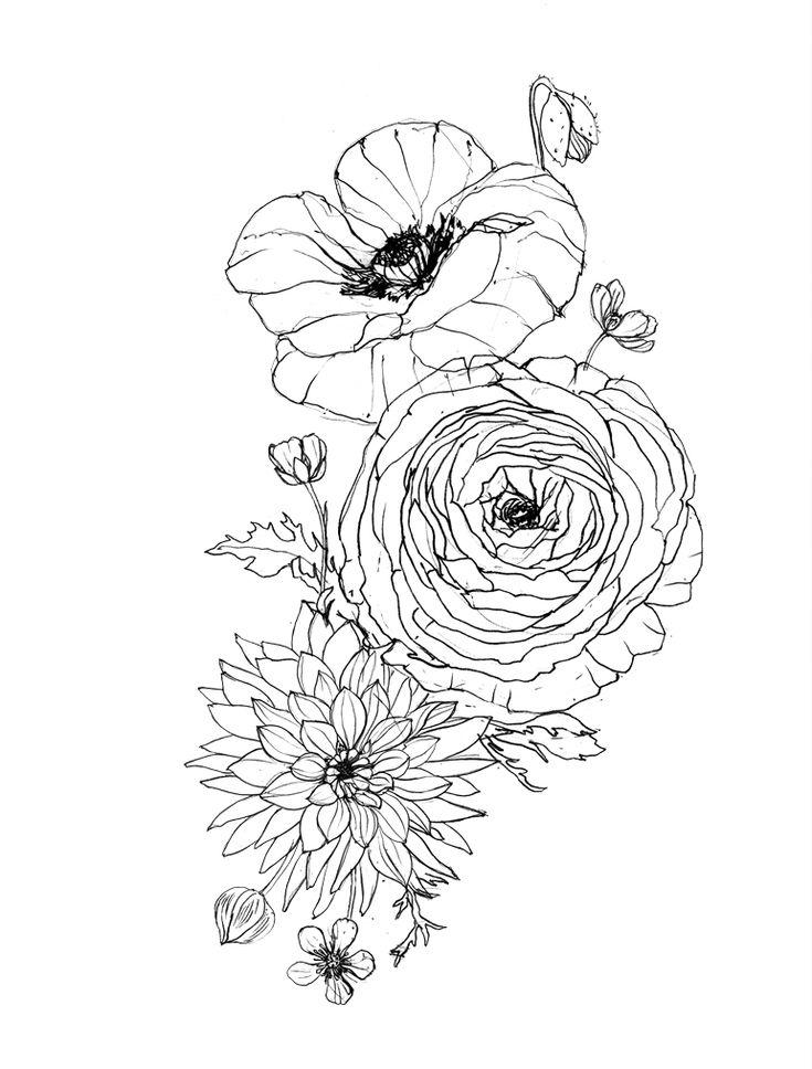 Image Result For Ranunculus Tattoo Tats Pinterest