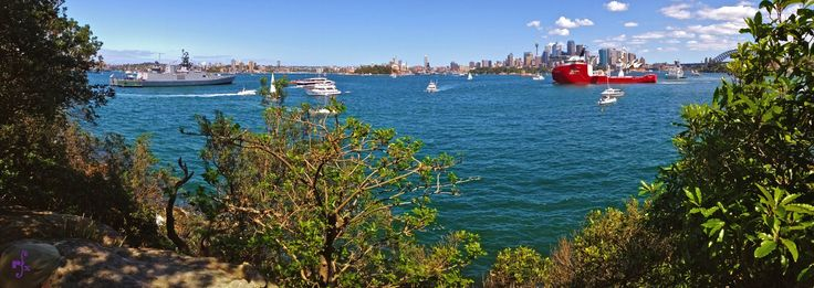 Sydney Harbour from Cremorne Point