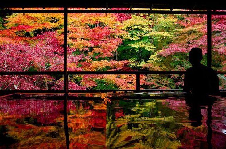 """5,067 次赞、 6 条评论 - RETRIP<リトリップ>国内 (@retrip_nippon) 在 Instagram 发布:""""【RETRIP×京都】…"""""""