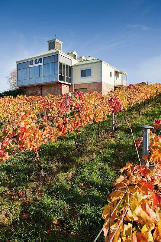 Hahndorf Vineyards – Adelaide Hills, South Australia