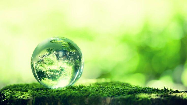 Ambiente: comunicazione investimenti dal 1° settembre…