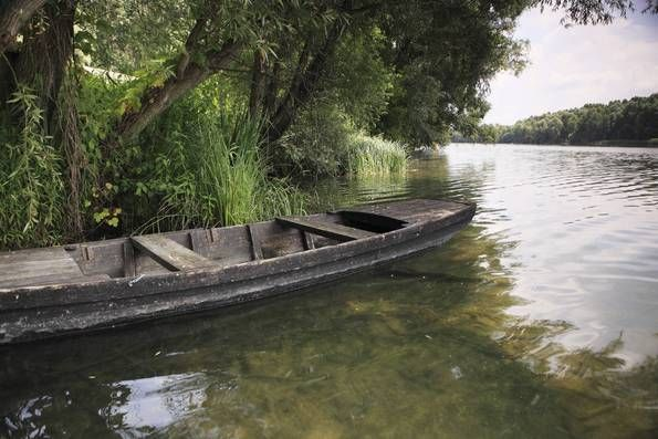 The floodplain forests and the swampy, marshy areas of the Danube (Hungarian: Duna) spread on the left bank of the river from Bratislava (Pozsony) as far as Zlatná na Ostrove...