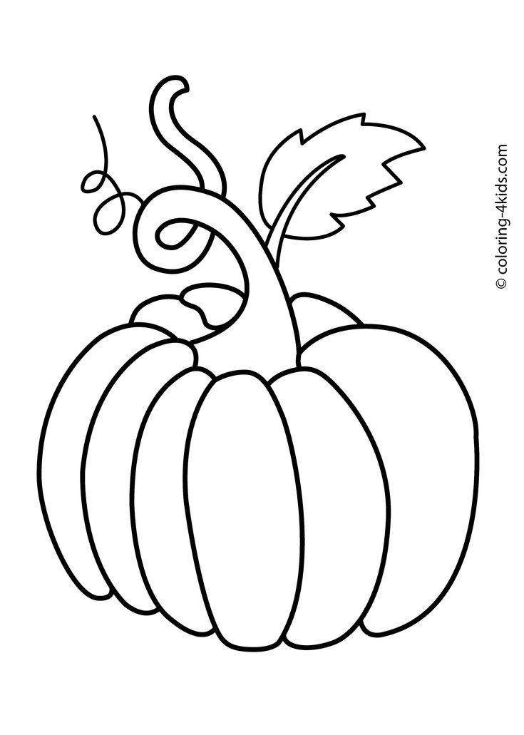 Line Drawing Zucchini : Best images about fruits berries and vegetables