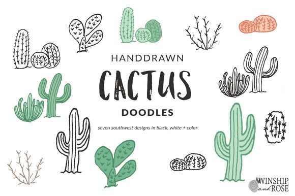 Cactus Doodle Clip Art by WinshipAndRose on @creativemarket
