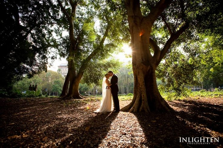 Location » Hyde Park Sydney.   Romantic, imaginative, stunning, serene,  lovely, environment. Ideal for outside wedding portraits.