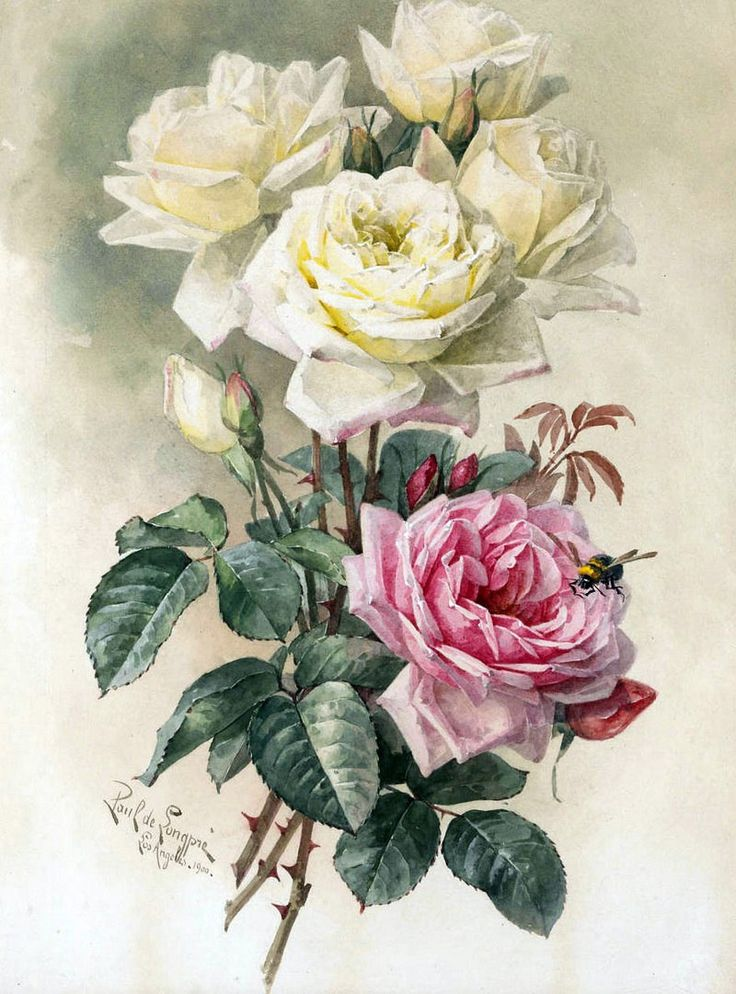 Цветы картинки ретро
