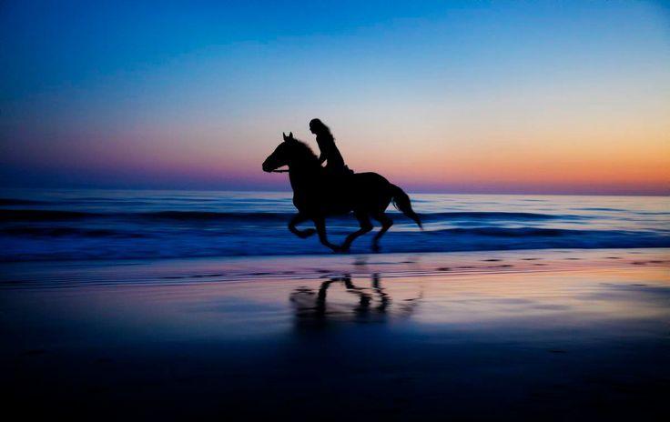 Willkommen bei Aventura Ecuestre, Reiten, Pferde und Ausritte in Tarifa - Pferde und Reiten