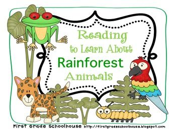 Reading to Learn About Rainforest Animals by First Grade Schoolhouse. $3.00 FIRST and SECOND grades. Includes printables for 9 different rainforest animals: boa, toucan, iguana, jaguar, katydid, orangutan, macaw, sloth, and tree frog. Students write 3 facts about a rainforest animal and read their writing to two friends. Friends even have a place to sign their names. Integrate reading, writing, speaking, and listening, too!