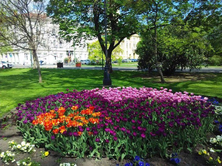Széchenyi tér, Szeged