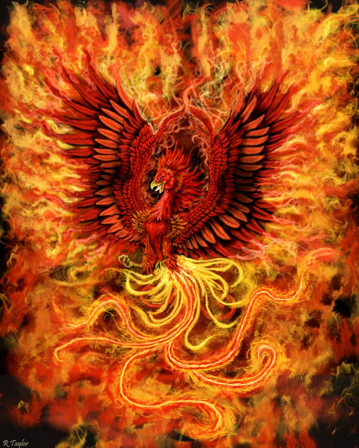 Phoenix | The rise of the Phoenix by Ruth-Tay on deviantART