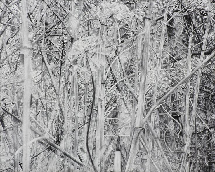 Mirjam abraas, Graphite drawing on panel, Untitled, 2016, 30x24 cm