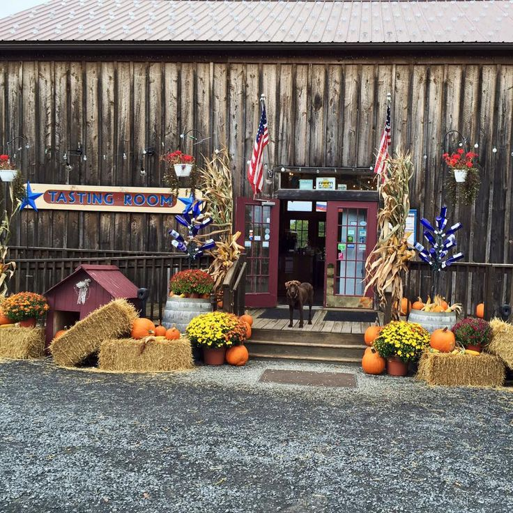 The best Finger Lakes wineries to visit feature homey inns, terrific restaurants and spectacular landscape views—as well as ambitious winemakers producin...