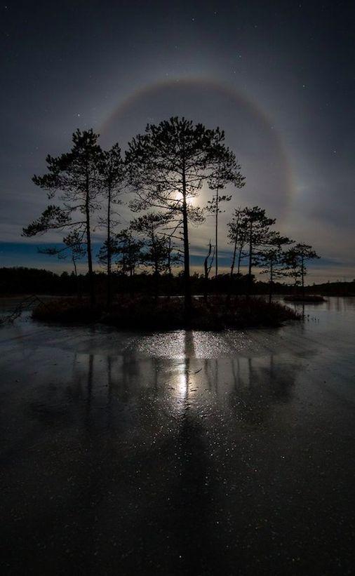 Moonlit island in the wetland bogs of Estonia • photo: Jaak Sarv on 500px