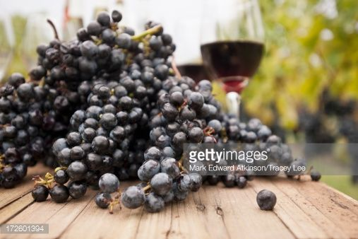 Stock Photo : Grapes and glasses of wine on table outdoors