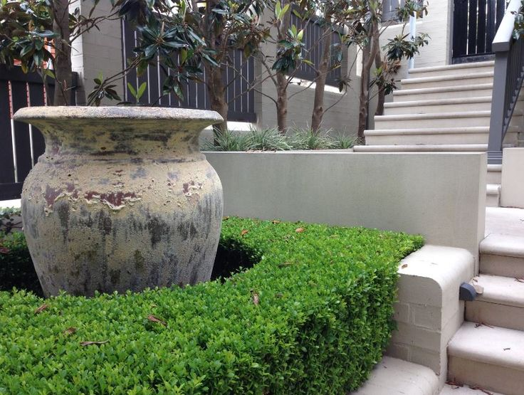 Garden Focal Point Water Features serve as great focal points in a garden. The positioning of this water feature in the front entry of the property creates a sense of interest the instant you open the front gate.
