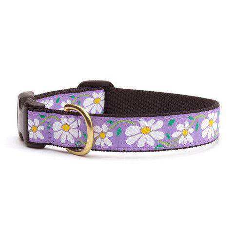 Up Country Daisy Dog Collar | PupLife Dog Supplies
