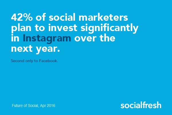 social network investment instagram 2016