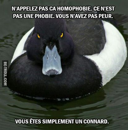 N'appelez pas ça homophobie