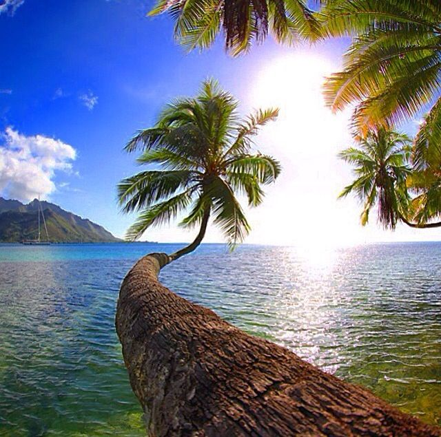 17 Best Images About Beaches Islands On Pinterest Warm