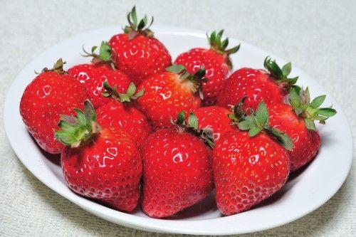 """Amaou""(Hakata strawberry). Looking for more information aboout Fukuoka? Go Visit Fukuoka City Photo Gallery. http://showcase.city.fukuoka.lg.jp/"