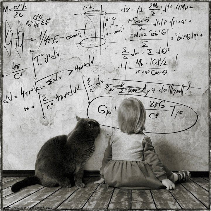 L'amicizia in uno scatto (e un miao). Le immagini di Andy Prokh  (via Hub09 - Social Design)