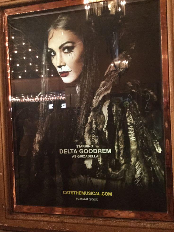Delta poster at cats