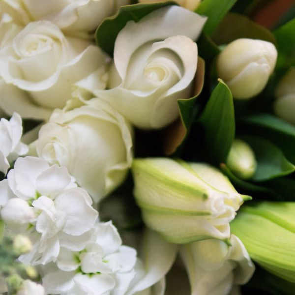 Classic Whites! A stunning flower bouquet of crisp whites and lush green foliages -just perfect for any occasion. From $65 + $18 delivery in Sydney Order now: http://www.naomijones.com.au/pages/Buy-Flowers-Online.html