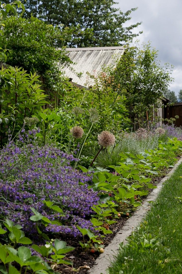 17 Best images about Gardens to enjoy on Pinterest