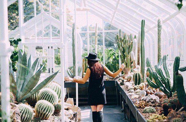 Best 25 The Conservatory Ideas On Pinterest