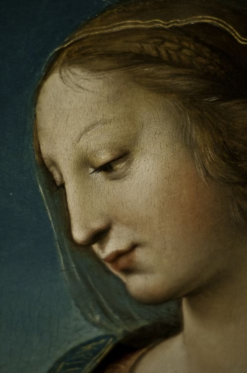The Niccolini-Cowper Madonna (detail), Raphael, 1508