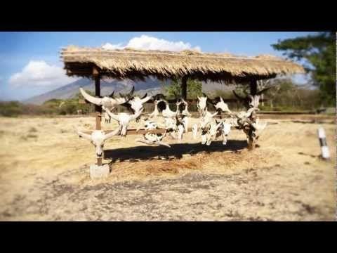 Taman Baluran Nationalpark Documentary Trailer 2013 - http://bali-traveller.com/taman-baluran-nationalpark-documentary-trailer-2013/