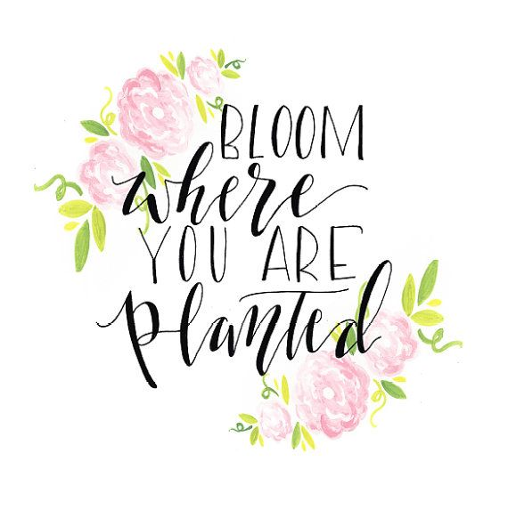 Bloom where you are planted / Print / Flowers / Leaves / Wreath