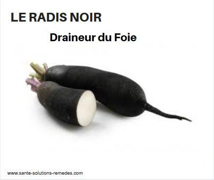 Le Radis Noir, Draineur du Foie