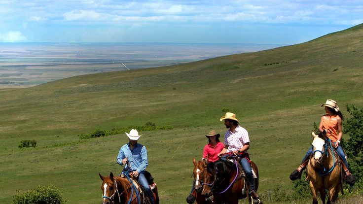 Life is Calling! An incredible look at the Cypress Hills and the Historic Reesor Ranch on the Discovery Channel!