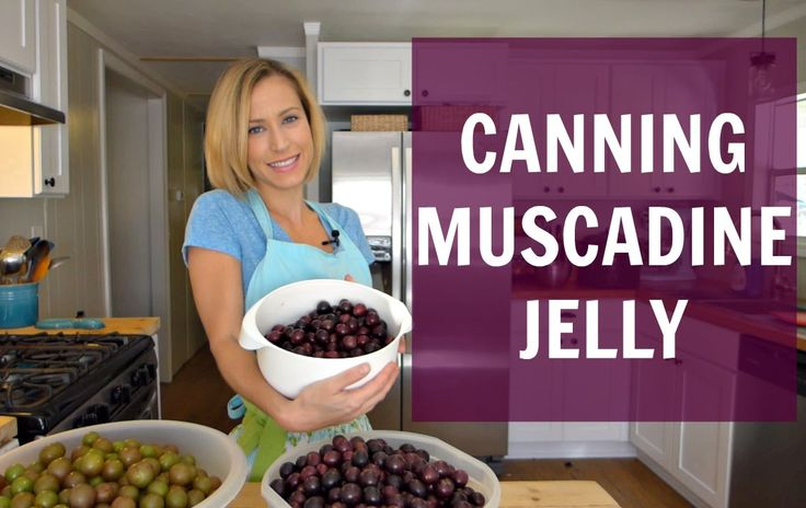 Let's Can Muscadine Jelly!
