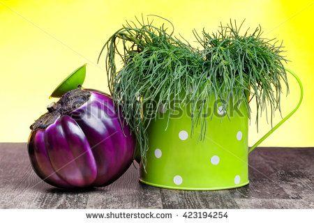 Antioxidant and succulent vegetables: agretti and segmented purple aubergine.